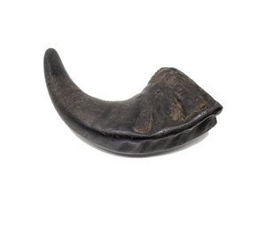 OPEN RANGE PET TREATS WATER BUFFALO HORN