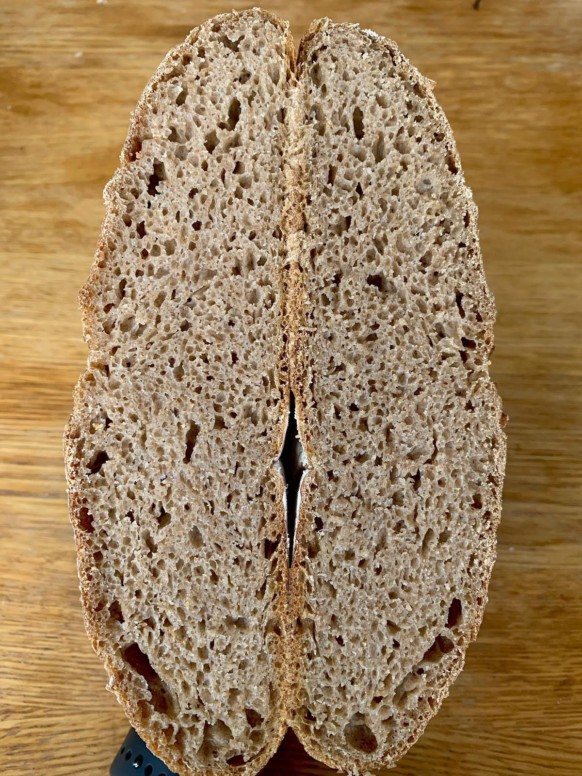 German Rye Sourdough Starter