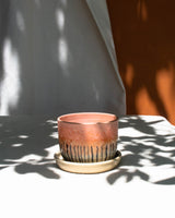 ceramic pots and planters