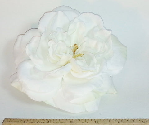 POPPET 44 White Rose