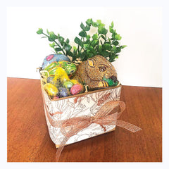 Easter Gift pack wombat