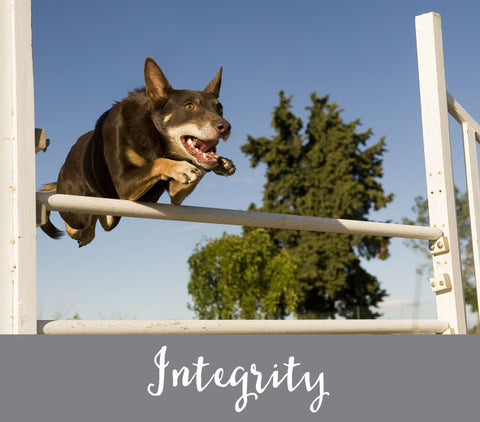 Our Values - Integrity