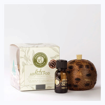 Banksia-Aroma-Pod-Medium-Gift-Box-with-Eucalyptus-oil