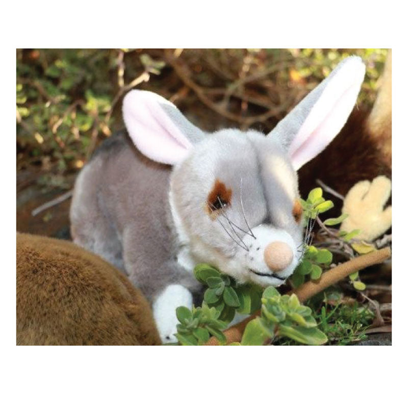 Bilby-stuffed-toy-made-in-Australia