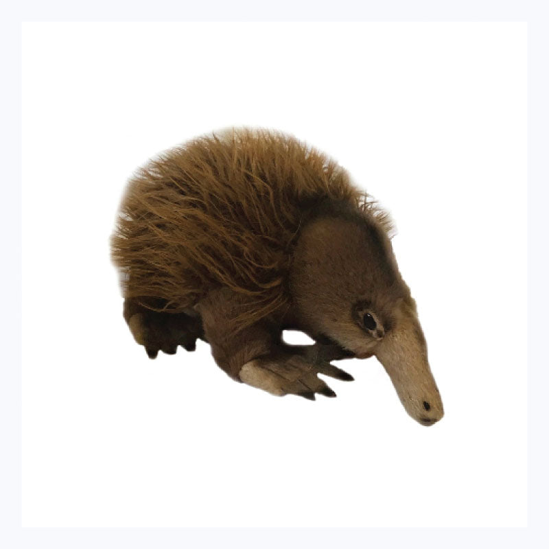 Echidna-Soft-Toy-Harry