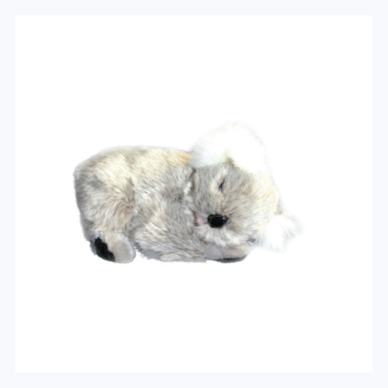 Koala-Soft-Toy-Kip-sleeping-koala