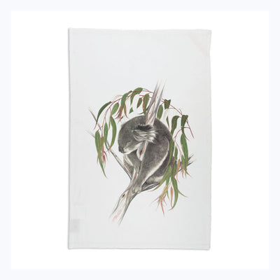 Koala-in-Gum-Tree-Tea-Towel-souvenir