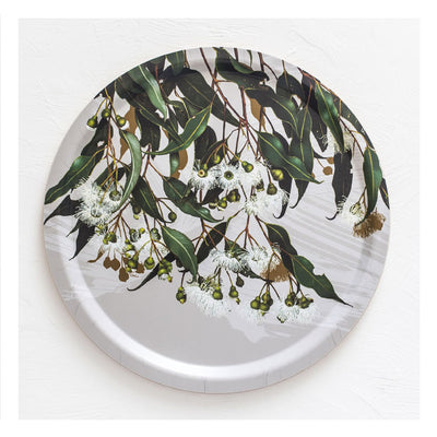 australian-gift-tray-flowering-marri-gum