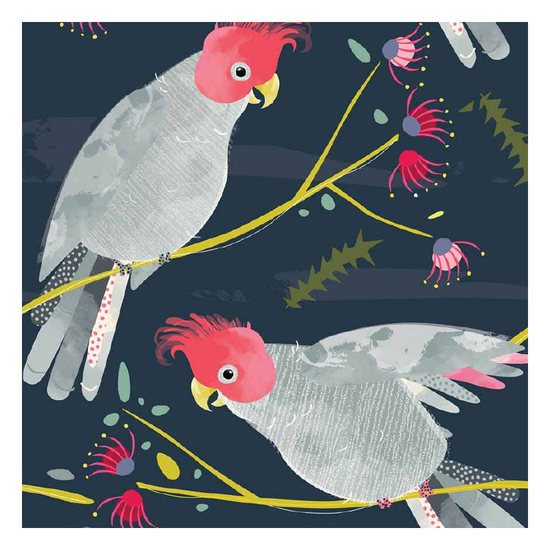 Tea Towel - Gang Gang Cockatoo