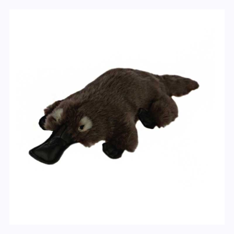 Platypus Gifts