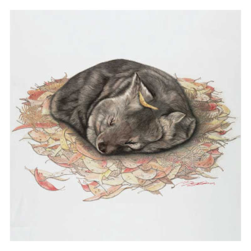 wombat-tea-towel-souvenir-white
