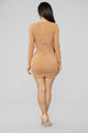 Can't Mesh Up My Day Mini Dress - Nude