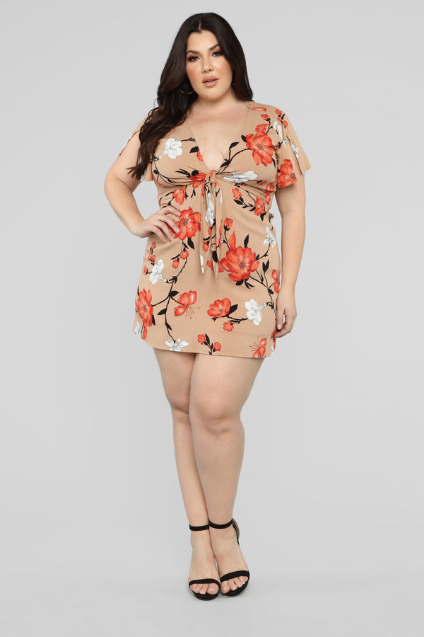 958aed23847 Plus Size   Curve Clothing