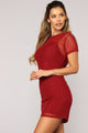 Spring To Action Mesh Dress - Burgundy