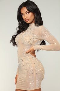 See Me Through Mesh Dress - Taupe