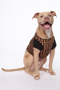 Social Status Pet - Brown/Black