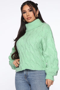 Give Me Chills Turtleneck Sweater - Green