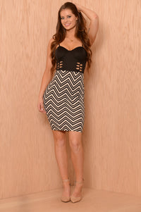 Wild Kingdom Dress - Black