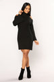 Amenity Sweater Dress - Black
