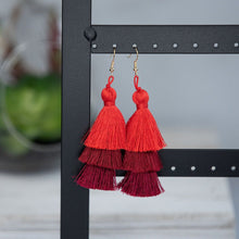 Load image into Gallery viewer, Ombré Silky Tassel Earrings