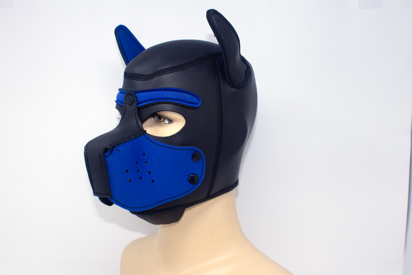 Puppy Neoprene Hood Blue
