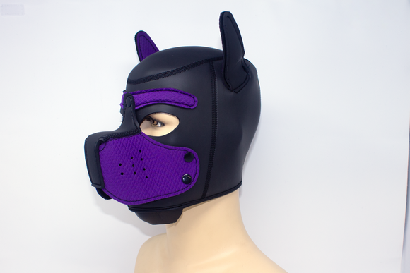 Puppy Neoprene Hood Purple