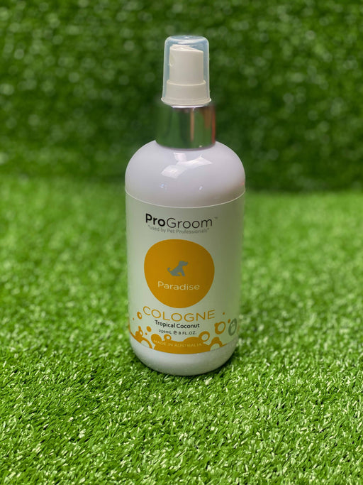 Progroom Paradise Cologne - Gold (Tropical Coconut) 250ml
