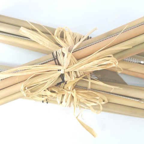 Bamboo Reusable Eco Straw single