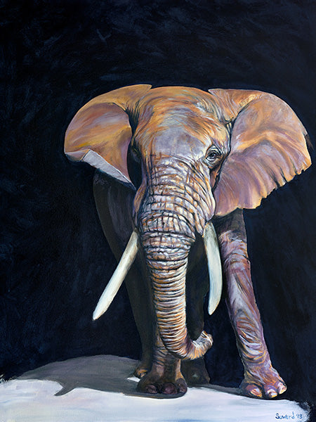 Army of Me, copyright Sarah Soward, painting of an African elephant with large tusks in a black background