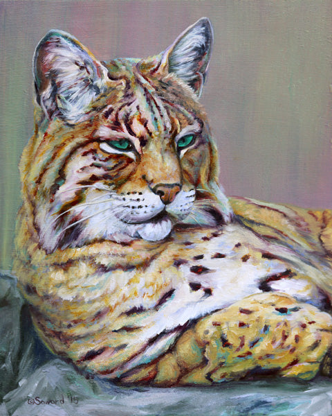 Green Eyes, copyright Sarah Soward, painting of a bobcat with green eyes