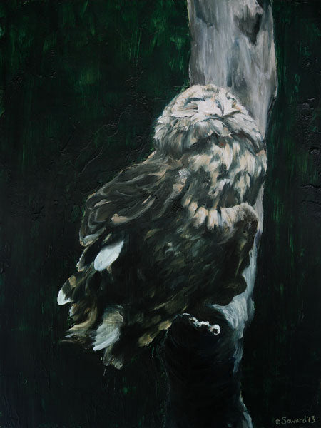Moonbather, copyright Sarah Soward, painting of a Hawaiian pueo owl at night with its face up raised to the moonlight