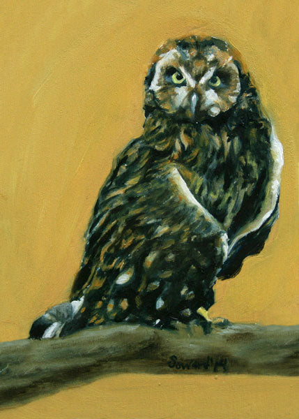At Attention, Pueo, copyright Sarah Soward, painting of a Hawaiian owl on a mustard yellow background