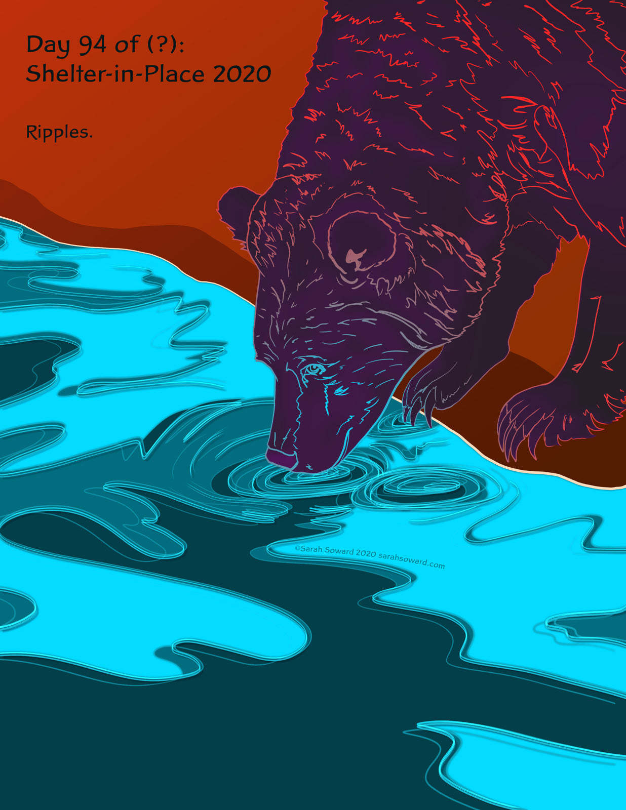 Image of a bear poking its nose into the edge of a river. The bear is purple, with contour lines gradating from blue to red as they get farther from the river. The text on the image reads, ripples.
