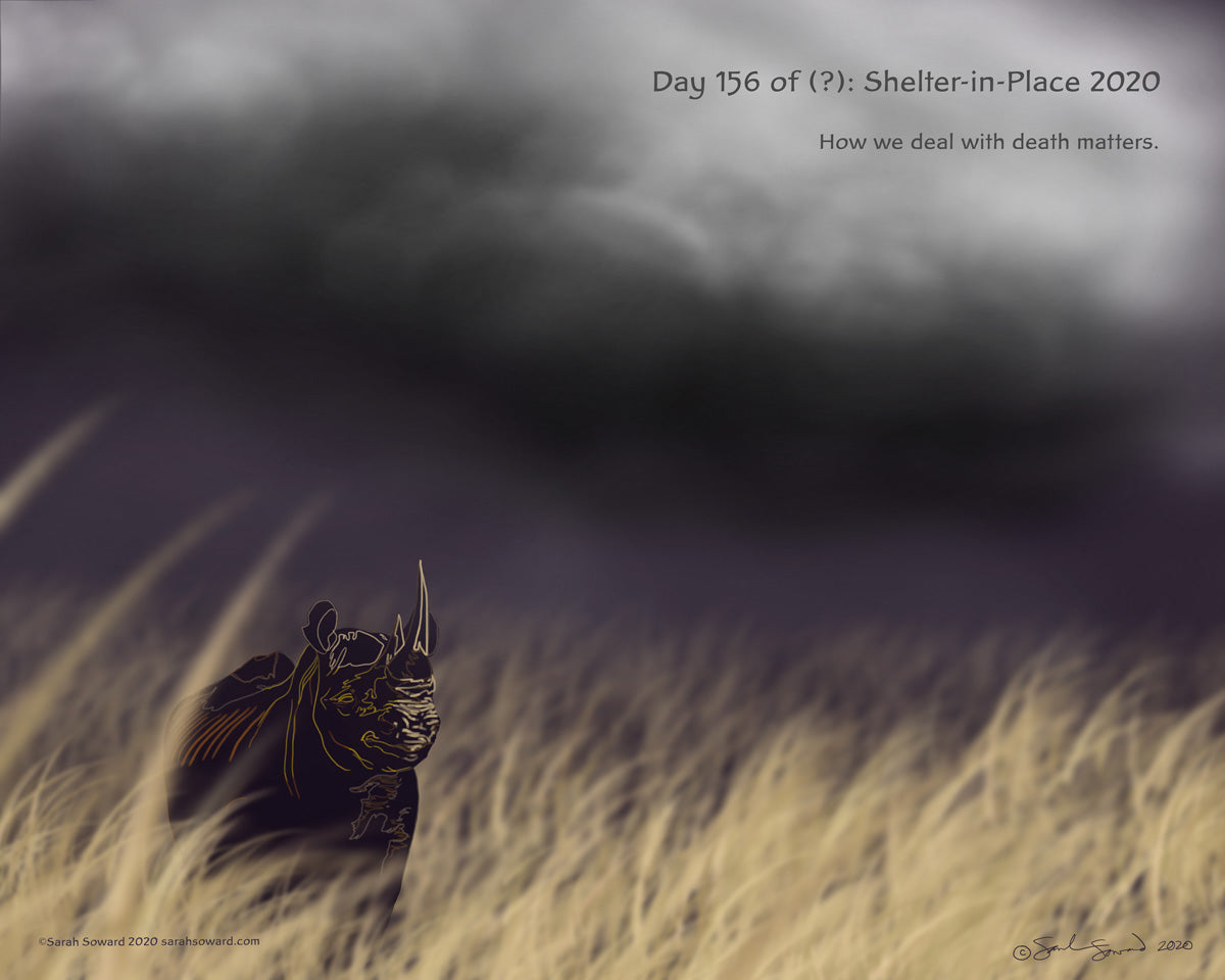 The image shows a black rhino in a savanna of tall dry grass with storm couds overhead. Even though the rhino is alone right now and the wind is blowing and a storm is brewing, it's happy and unafraid. The text on the image reads  How we deal with death matters.