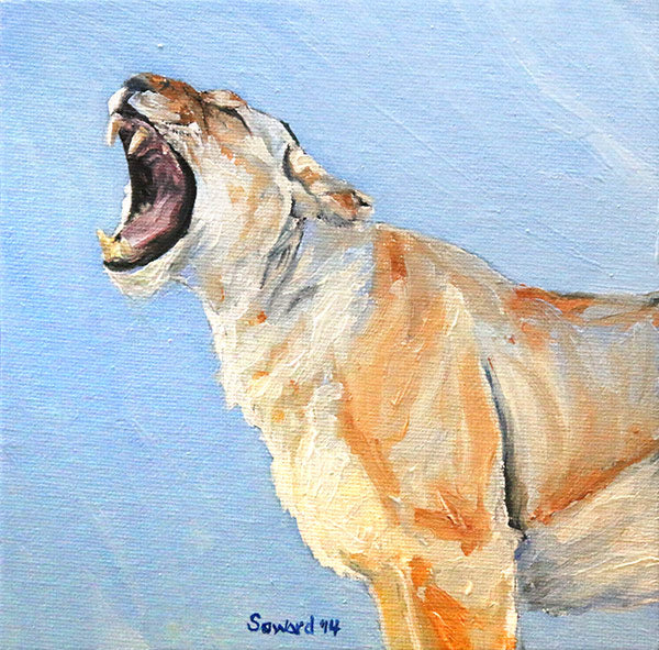 The Yawn, Lioness, copyright Sarah Soward, painting of a lioness yawning