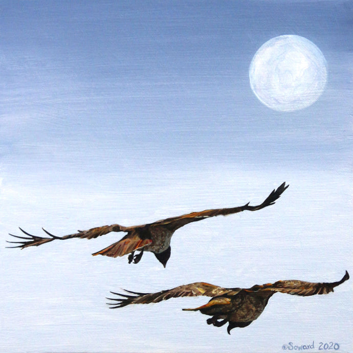 Soaring in the Afternoon Moon, 'Io Hawaiian Hawk, Original oil painting