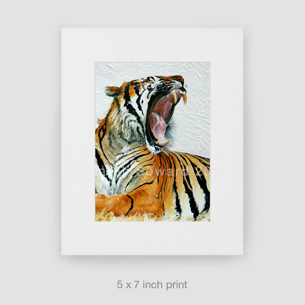 The Yawn, Tiger 5x7 Print