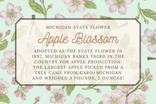 Load image into Gallery viewer, Apple Blossom Scarf