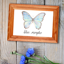 Load image into Gallery viewer, Blue Morpho Butterfly Art Print