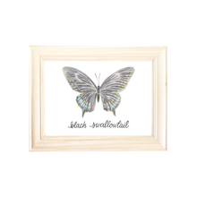 Load image into Gallery viewer, Black Swallowtail Butterfly Art Print