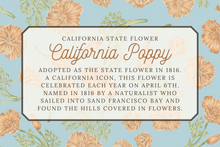 Load image into Gallery viewer, California State Map Folded Card