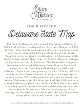 Load image into Gallery viewer, Delaware State Map Art Print