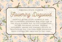 Load image into Gallery viewer, Flowering Dogwood Scarf