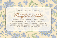 Load image into Gallery viewer, Alaska State Map Illustrated Greeting Card
