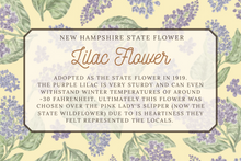 Load image into Gallery viewer, New Hampshire State Map Post Card