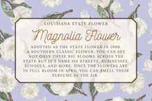Load image into Gallery viewer, Louisiana State Map Folded Card