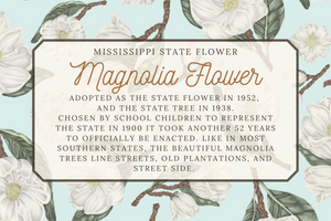 Mississippi State Map Art Print