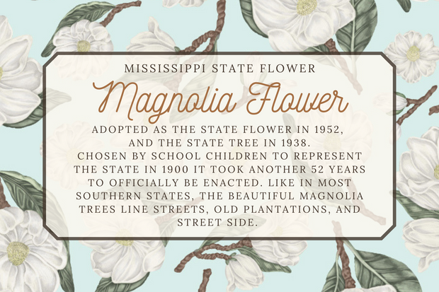 Mississippi State Map Folded Card 1