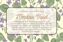 Load image into Gallery viewer, Meadow Violet Flower Scarf