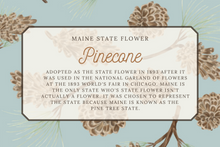 Load image into Gallery viewer, Maine State Map Folded Card